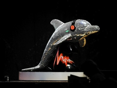 WINDOW DISPLAYS I EVENT STYLING I PROPS I CUSTOM ARTWORK I EDINBURGH - Wild in Art, Wild Dolphins, Aberdeen, Disco Dolphin