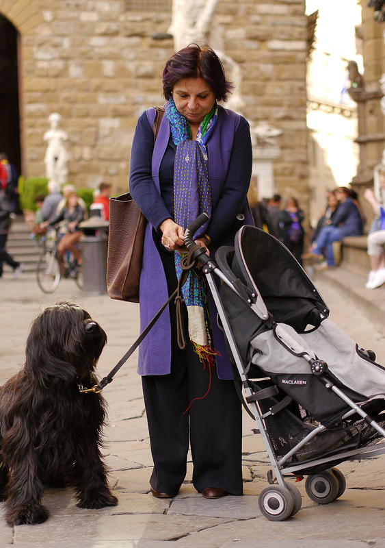 Lumix Challenge - Dog and pram