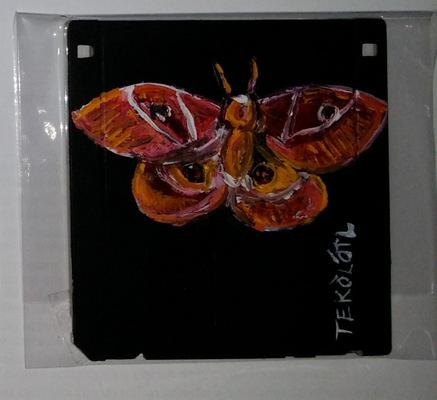 Tekolotl - ArtWork - mariposa nocturna - símbolo de las supersticiones
