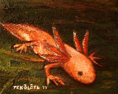 Tekolotl - ArtWork - Axolotl (ajolote)