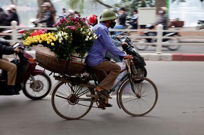 Diegophoto - Vietnam