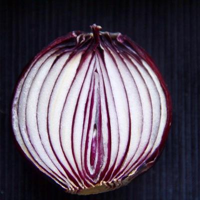 dangkhoa - Onion