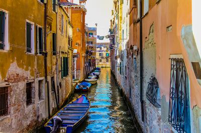 dangkhoa - Venice