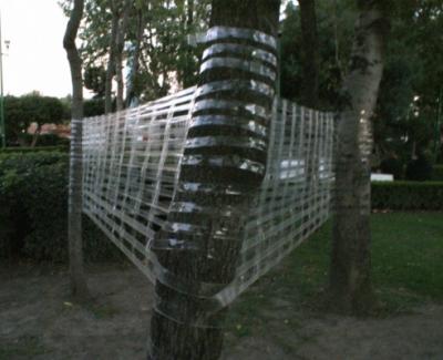 Elisa Lemus - Segundo acto de tejido