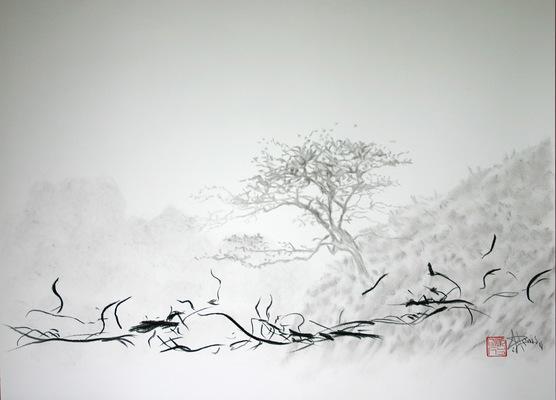 dessinsdenis - De la vallée des Aldudes