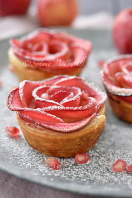 Sylvie Aït-ali - Apple rose