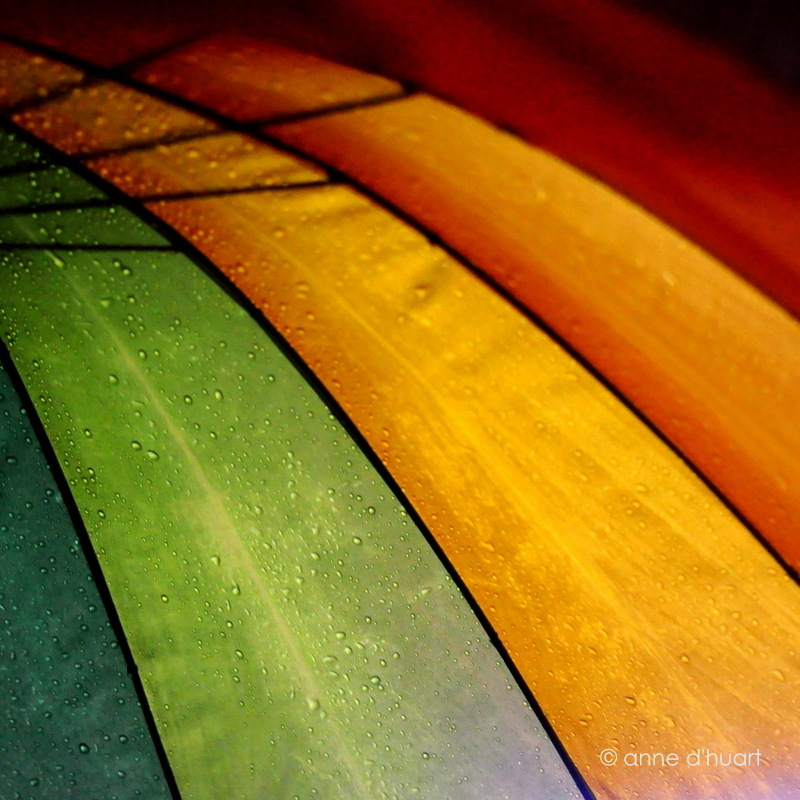 Anne dHuart . Photographies - Rainbow