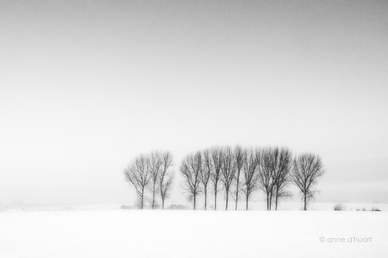 Anne dHuart . Photographies - Tombe la neige