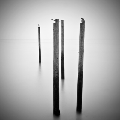 Patrick Verbeeck Photography - #POS-4