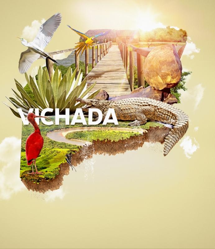 themustachelady - Proyecto Paisajes sostenibles de la Amazonía Colombiana.