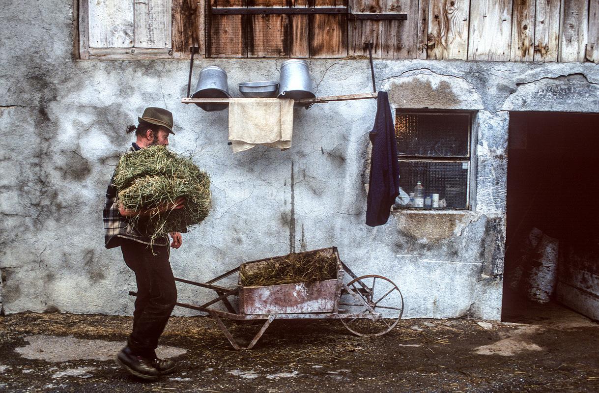 Fabien Delairon photographe - Lucien