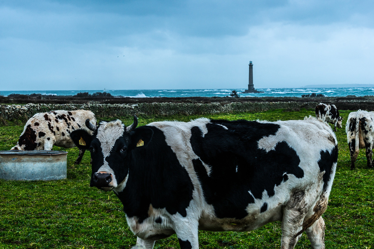 Fabien Delairon photographe - Normandie - Port Goury