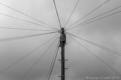 karenodellphotography