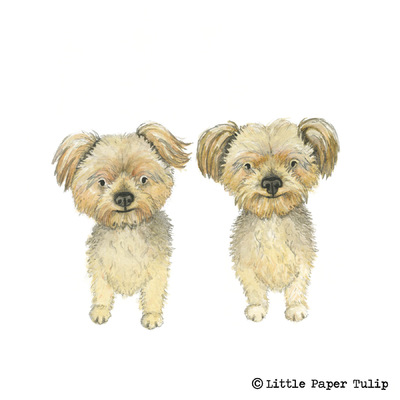 Little Paper Tulip - Kat owns a coffee shop and wanted a portrait framed to remind her of her two lovely dogs at home, Teddy and Sollie.