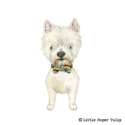 Little Paper Tulip - This is Archie modelling his lovely check bow tie for Kirsty, so adorable!
