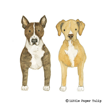 Little Paper Tulip - Here is a portrait of Hugo and Mac that I painted for Sam and Rom. They both own a dog friendly B & B in North Wales. Check it out: https://www.airbnb.co.uk/rooms/11195097?_branch_match_id=460868463145648292&photo=0&ref_device_id=bd3ddf442dd0a0bd98dd97c67751444b88726c42&s=41&user_id=58290290