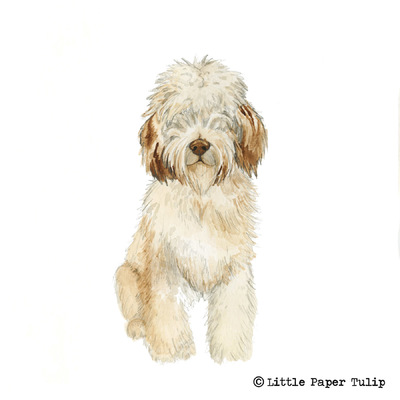 Little Paper Tulip - Sophie wanted to surprise her Dad with a portrait of their gorgeous dog Chester.