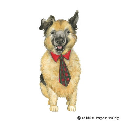 Little Paper Tulip - How adorable is Parker in his tie? Parker was really poorly earlier this year with GDV, and if it wasnt for an emergency vet he would of died. Luckily he is back to good health now, thank goodness! This was painted for Amanda, she wanted to capture his character.