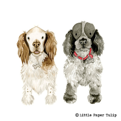 Little Paper Tulip - Meg & Mattie are a gorgeous pair, painted for Tim and Jane.