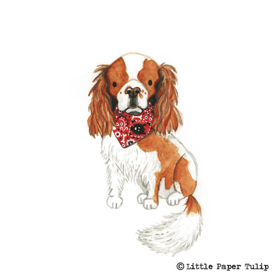 Little Paper Tulip - This is the adorable Teddy, painted for Carol. How cute is his bandana?