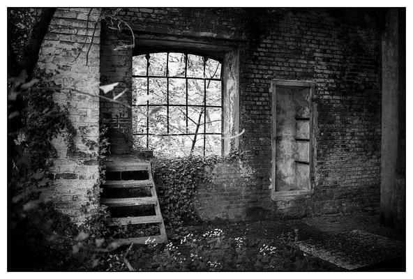 J·C DELVAUX - - Fenêtre sur cour -