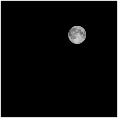 J·C DELVAUX - - Nuit noir -