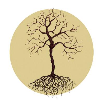 Create and Grow-Portfolio - Tree of life? -2015
