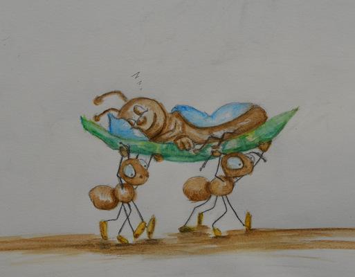 Create and Grow-Portfolio - Ants punished.