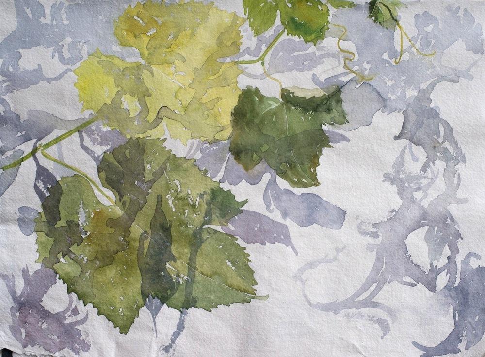 delphine.gosseries.aquarelles - la vigne en Camargue