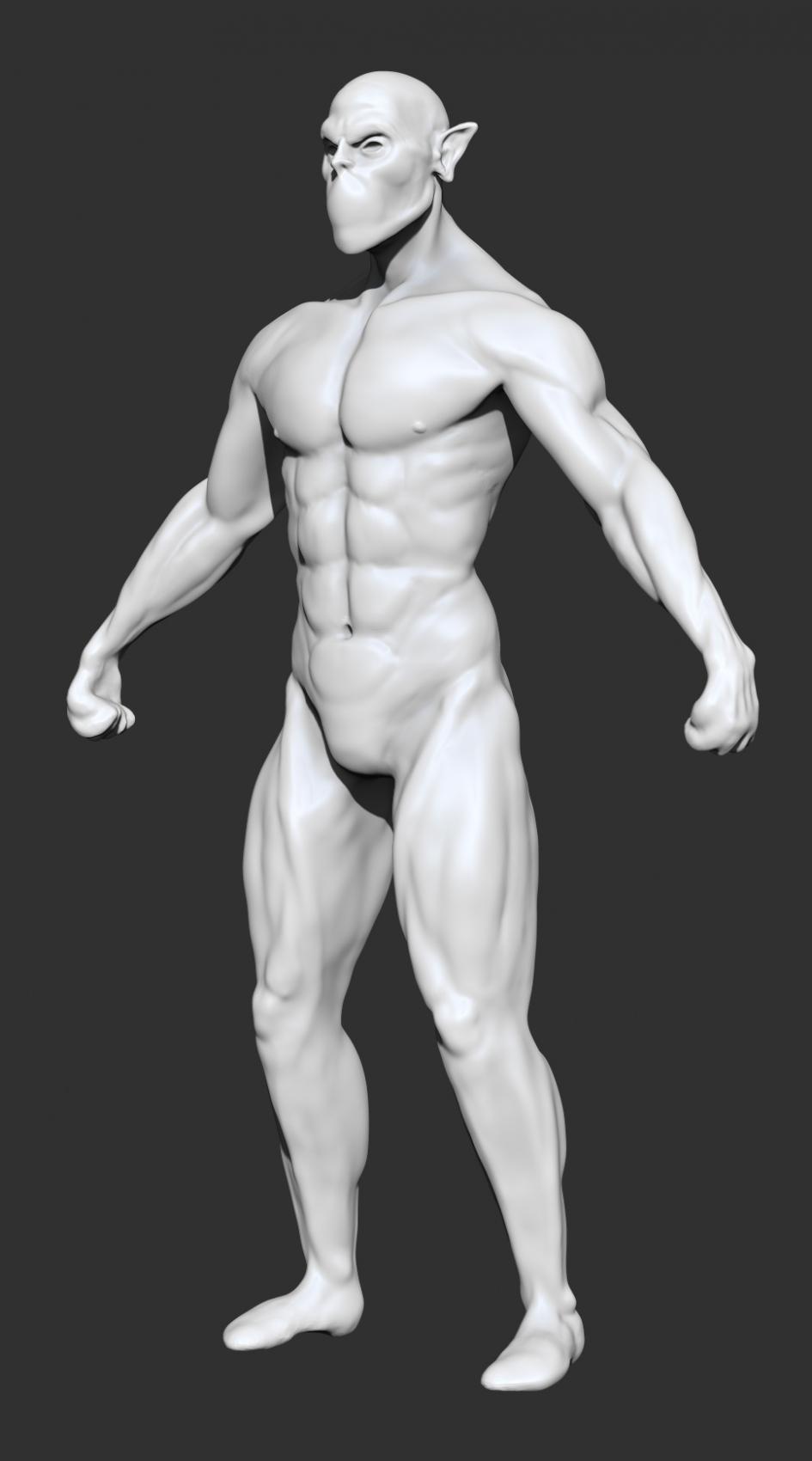 abou-jamra ziad - Anatomie