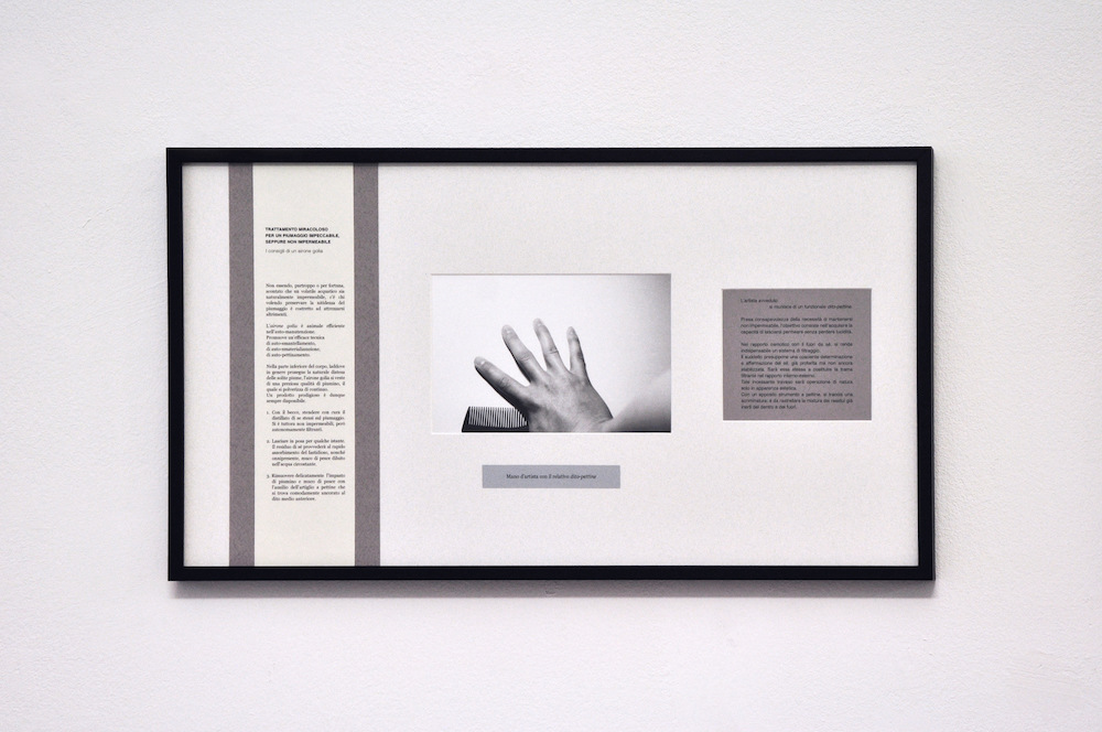 PLACENTIA ARTE - mano dartista con il relativo dito-pettine text + digital photo print on fiber paper cm. 32 x 57, 2016