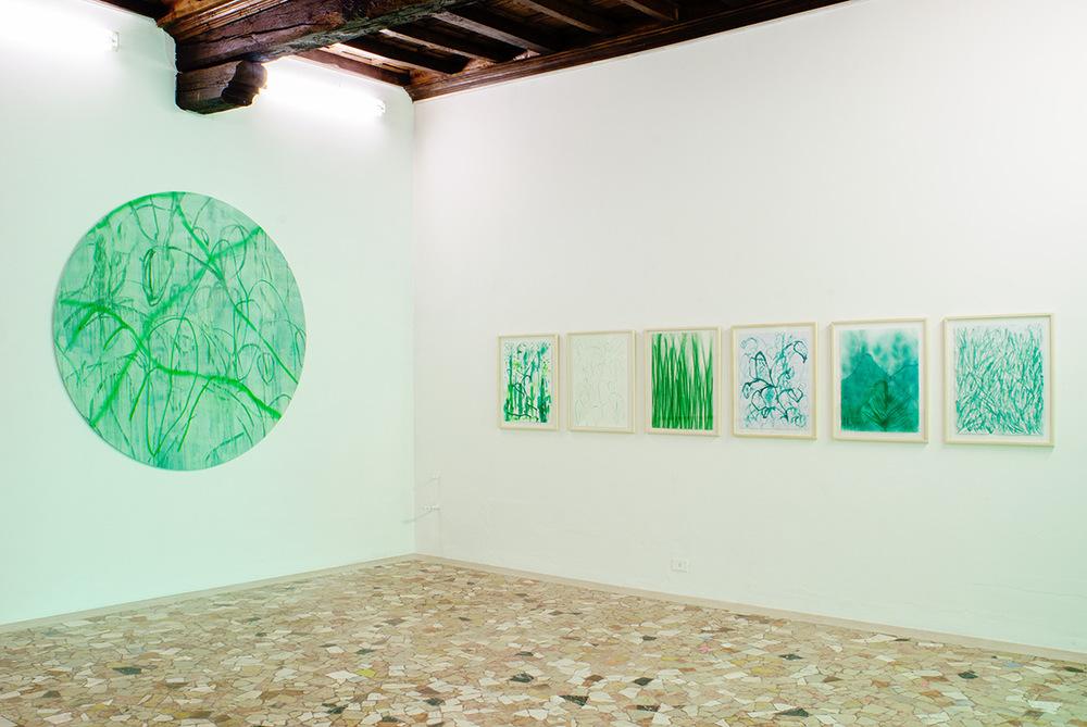 PLACENTIA ARTE - VERDE INDAGINE, installation view @ Placentia Arte, 2017 ph.credits - Marco Fava