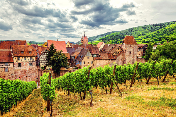 michal sikorski photography - View over Riquewihr in Alsace, France.