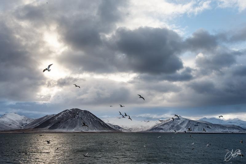 ÁGÚST ÞÓR PHOTOGRAPHY - Iceland-Kolgrafafjörður