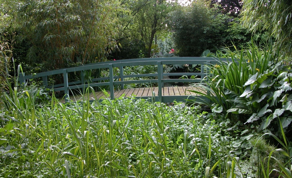 plants by design - The bridge provides a crossing point, a viewing point and a garden feature