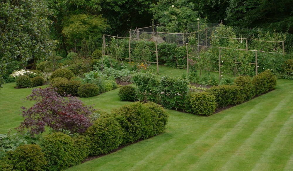 plants by design - Clipped yew and beech hedges provide enclosure for our fruit and vegetables.