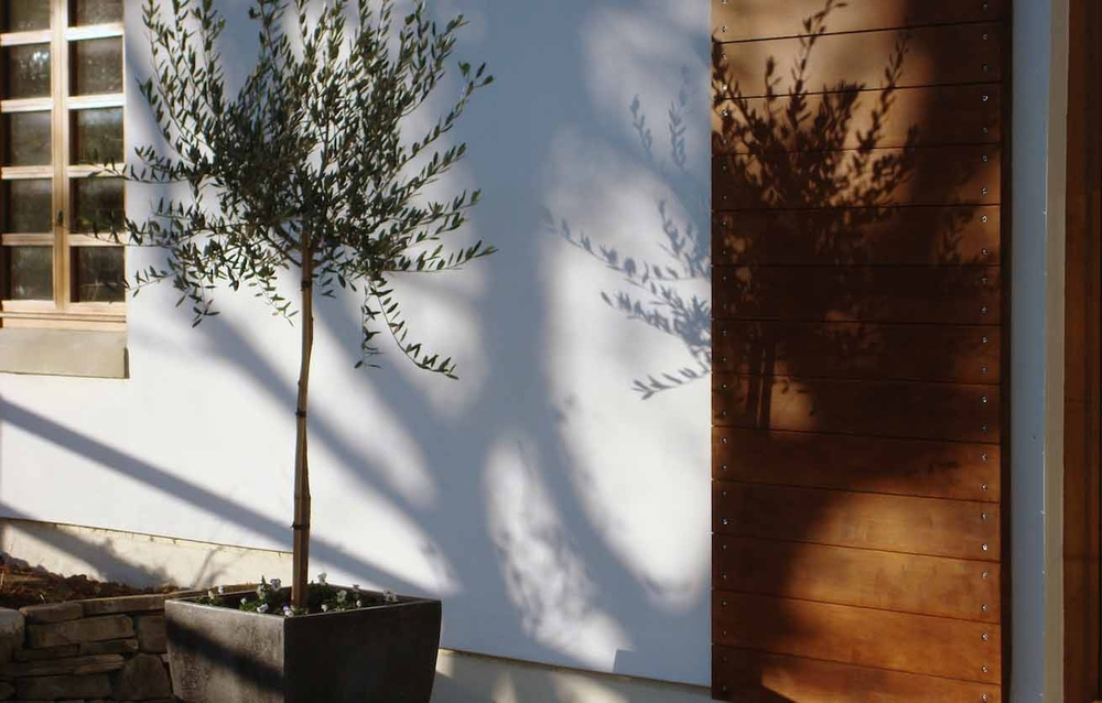 plants by design -