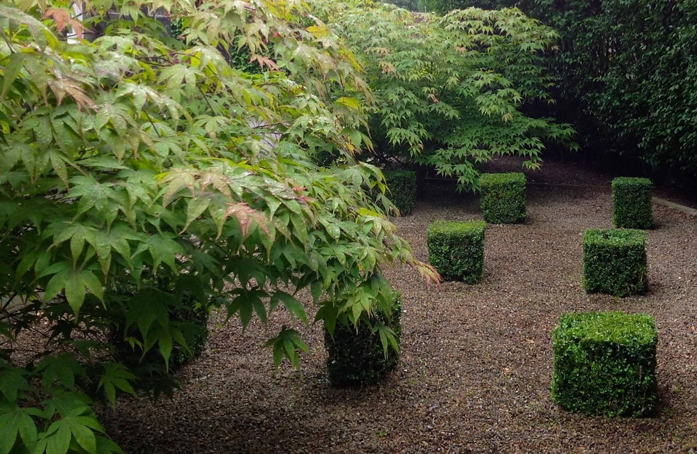 plants by design - plants by design is a garden and landscape architecture practice based in Yorkshire