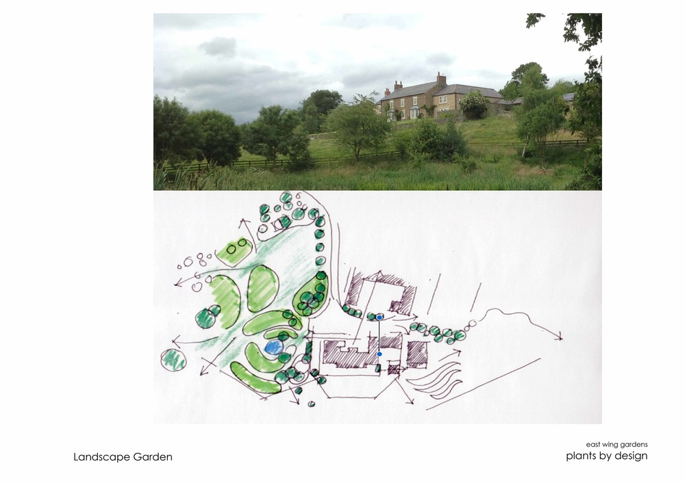 plants by design - Concept drawing for landscape masterplan 2016