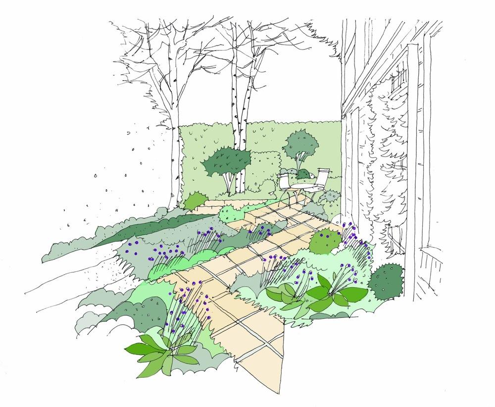 plants by design - London Garden Concept sketch 2017