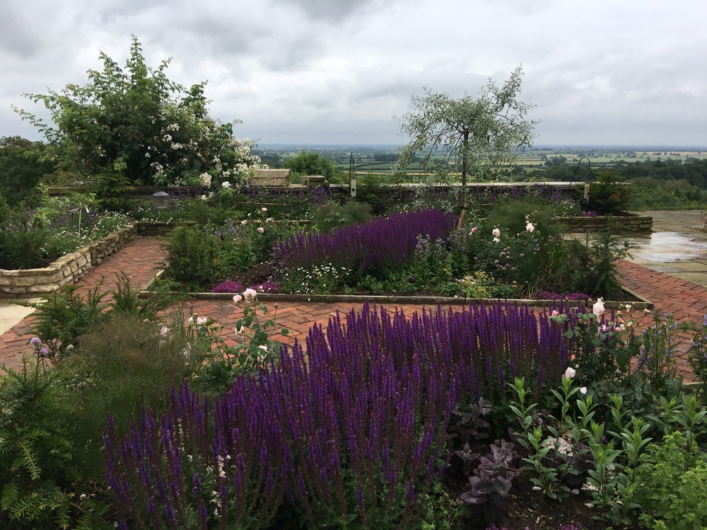 plants by design - Courtyard garden implementation 2017