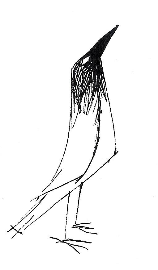 Raquel Barros - Crow 2012