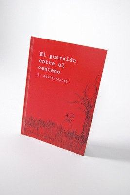 Raquel Barros -