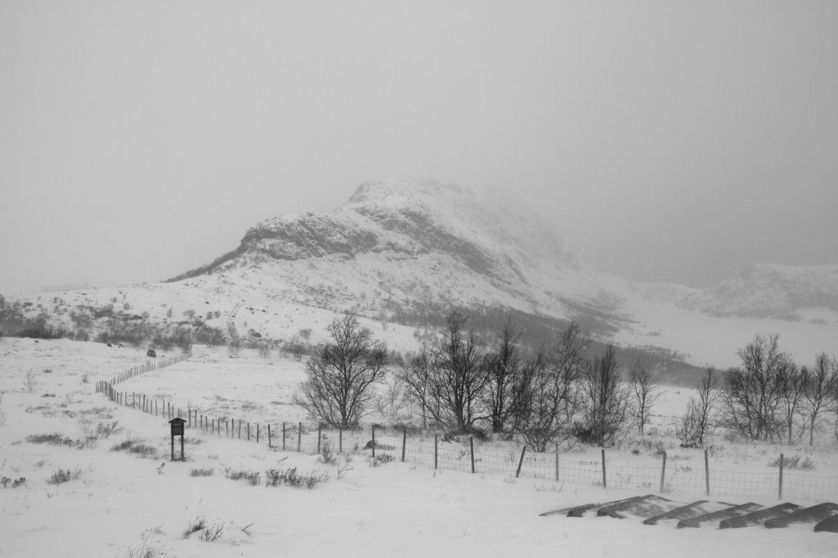 NaustvikPhotography.com - Mt. Knutshø, Norway