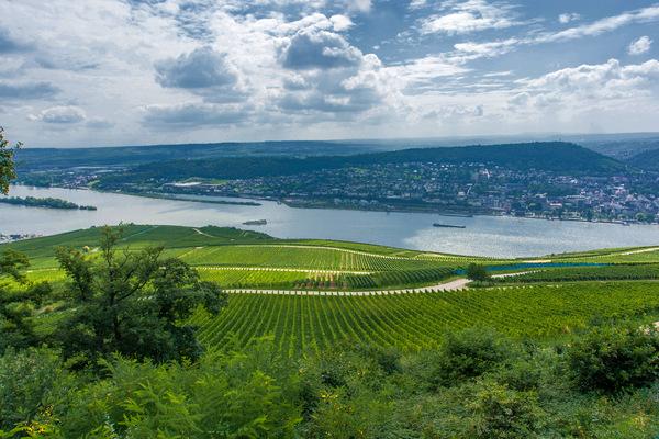 Kai Michael Neuhold - Fotojournalist - Blick über das Rheintal bei Bingen