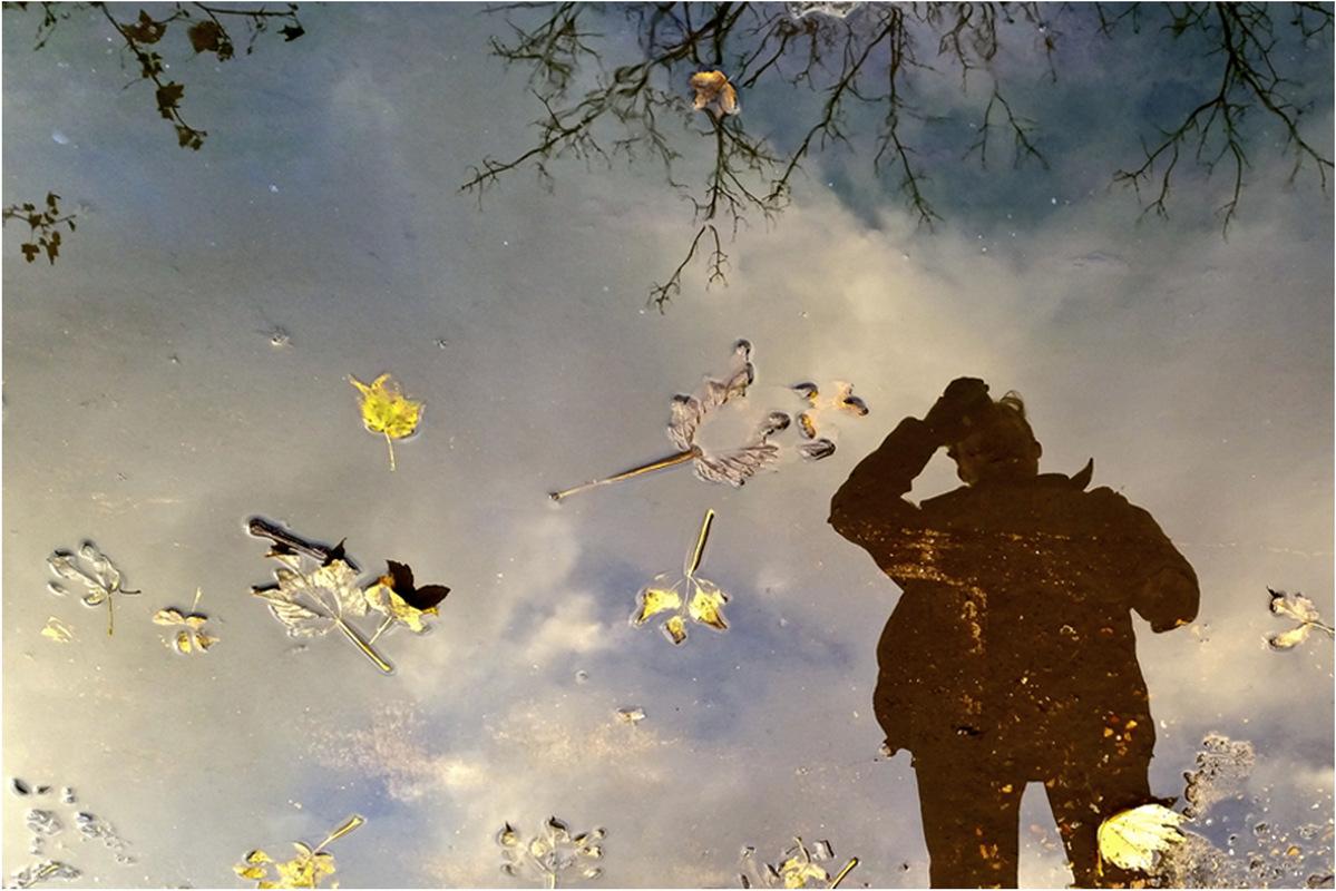 olivia pino photography - Camden, United Kingdom