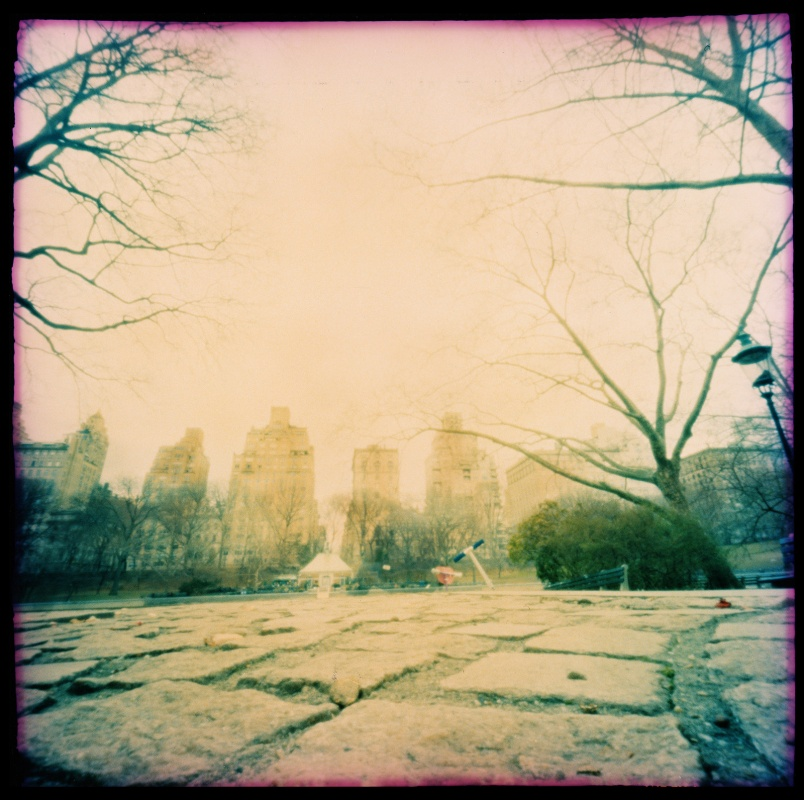 linda cartridge photographer and artist - Central park New York C print Open Editions in 30x30