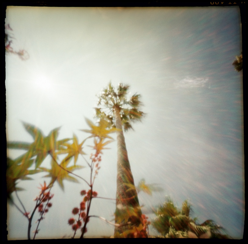 linda cartridge photographer and artist - French Riviera, C print Open Editions in 30x30