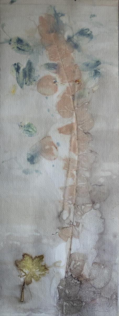 linda cartridge photographer and artist - Botanical contact print watercolour paper