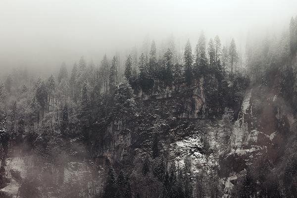 Sascha Riehl Fotograf -